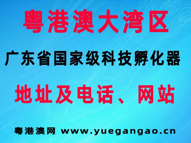 广东省国家级科技孵化器机构名称以及地