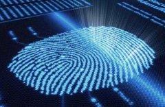 集成于智能手机显示屏内部的光学指纹识别技术 作者:
