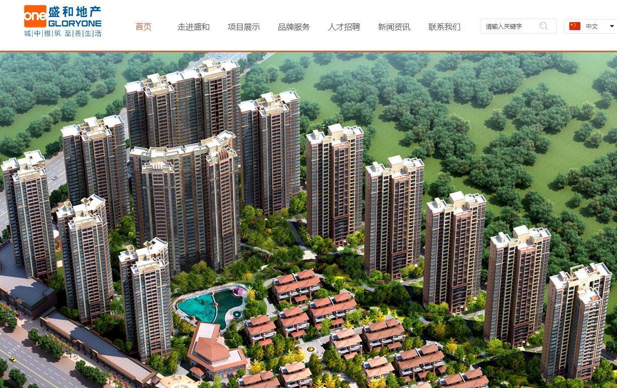 广东盛和房地产集团有限公司盛和湾区大厦项目总投资 1